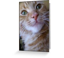 You Said What? Greeting Card
