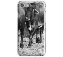 Cowa and Calves iPhone Case/Skin