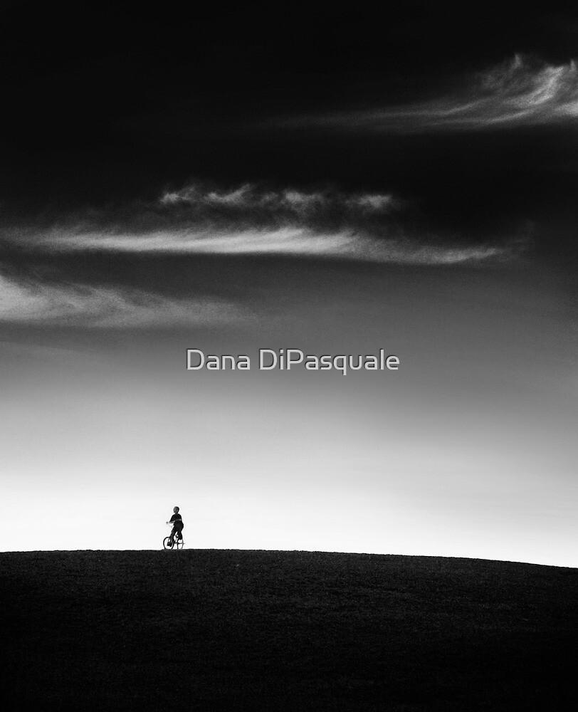 Racing the Wind by Dana DiPasquale