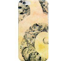 The Swan iPhone Case/Skin