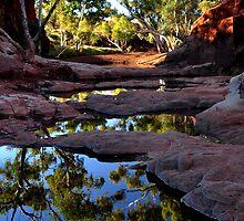 Creekbed by Nico Kenderessy