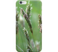 Wild grass iPhone Case/Skin