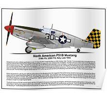 North American P51B Profile Poster