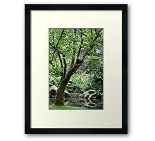 Restful Framed Print