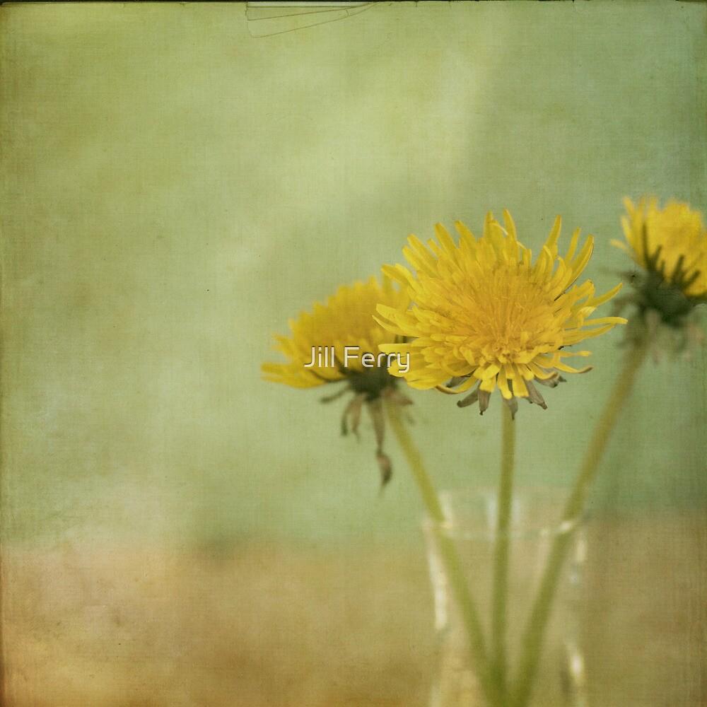 Dandelion Wine by Jill Ferry