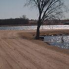 Man-made Pond by unigrackon