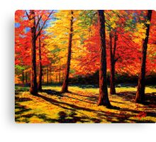 Maple Trees Park Canvas Print