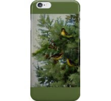 Birds In My Tamarack Tree iPhone Case/Skin