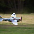 Model P-47D Thunderbolt - LDMFA by Nick Sage