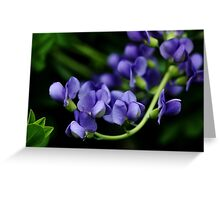 Indigo Blues Greeting Card