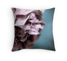 ...there came a time when it all became clear... Throw Pillow