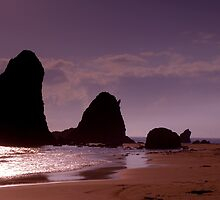 3 heads of Glass house rocks Narooma by Photo Galleria  Australia