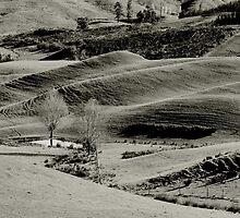 Landscape ripples by Duncan Cunningham