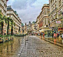Vienna in the rain by Ausgirl60