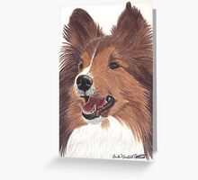 Shetland Sheepdog Vignette Greeting Card
