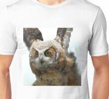 Test flight Unisex T-Shirt