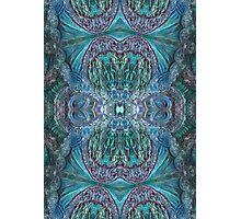 Paua Dreams series - #003 Photographic Print