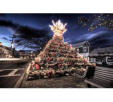 Provincetown Lobster Trap Christmas Tree Photographic Print