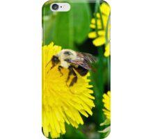 2015 A Dande and a Bumble iPhone Case/Skin