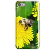 2015 A Dande and a Bumble iPhone Case/Skin