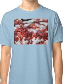 Blossoms in Spring Classic T-Shirt