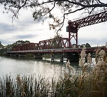 Bridge at Paringa. by Steve9