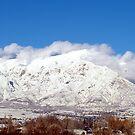 Snow on Ben Lomond Peak by Jan  Tribe