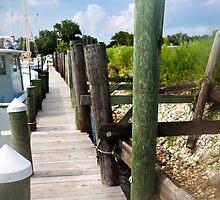 florida dock by nolenphotograph