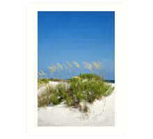 florida beaches- sand dune Art Print