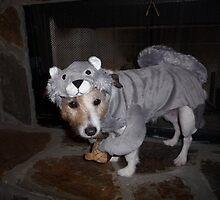 Undercover Squirrel Hunter by Adria Bryant
