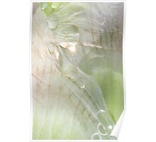 Natural Delicate Texture Poster