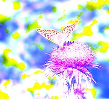 Electric Butterfly by PJSmyth