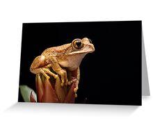 Tree Frog Greeting Card