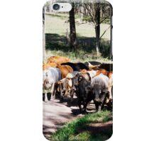 Herding the cattle iPhone Case/Skin