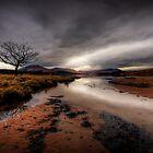 Loch Tulla Beach... by David Mould