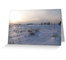 A Winter Snow Scene in Maine Greeting Card