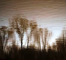 Water reflection VIII!...  by sendao