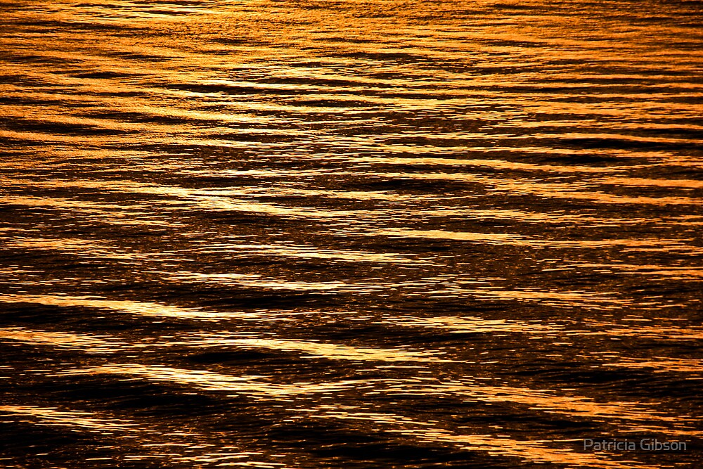 Liquid Gold by Patricia Gibson