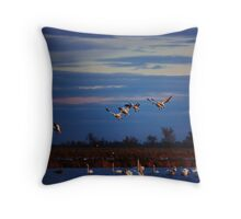 In for a landing Throw Pillow