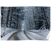 Snow On A Country Road (as-is) Poster