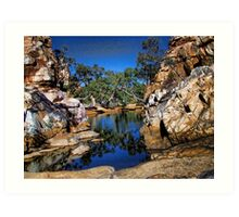 Birthday Water Hole Art Print