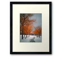 The Colours of Winter Framed Print