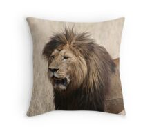 Lion, Serengeti National Park, Tanzania Africa Throw Pillow