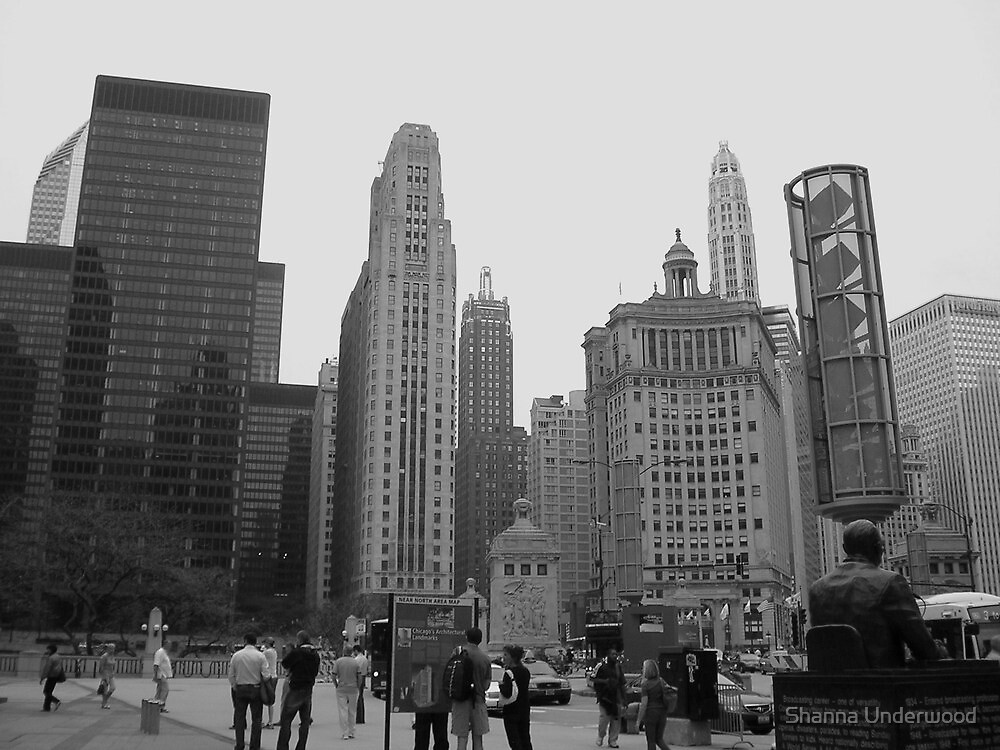 Chicago Cityscape by Shanna Underwood