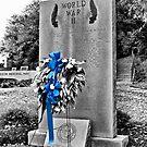 Fayetteville NC War Memorial by Michael  Bermingham