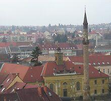Minaret, Eger, Hungary by Shanna Underwood