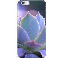 Echeveria Silver Queen iPhone Case/Skin