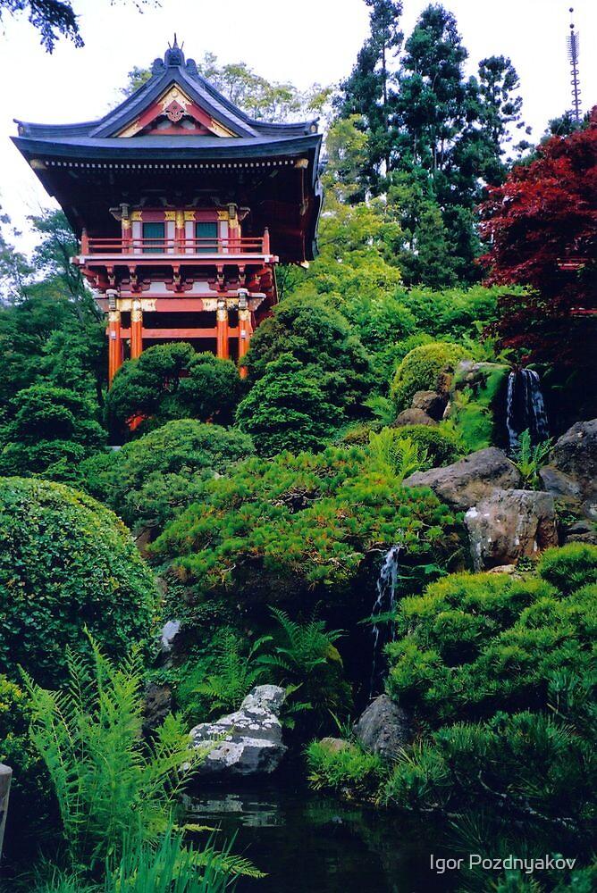 San Francisco Golden Gate Park Japanese Tea Ceremony Garden By Igor Pozdnyakov Redbubble