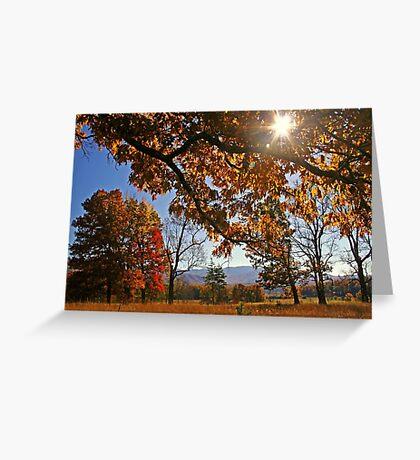 ~Shining Through~ Greeting Card
