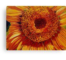 Sunflower Meditation Canvas Print